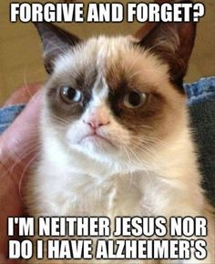 Love it!!!! Easier said than done for people. Cute pic too!!: Grumpy Cat Humor, Grump Cat, Laughing So Hard, Funny Cat Quotes, Funny Quotes Grumpy Cat, Funny Grumpy Cat Quotes, Grumpy Cat Funny Quotes, Died Laughing, Grumpy Cats