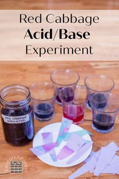Red Cabbage Acid/Base Experiment - ResearchParent.com Lessons For Kids, Science Lessons, Science Education, Science Projects, Elementary Science, Summer Science, Science For Kids, Science Fun, Science Ideas