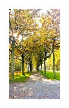 The infinity  Official Park in Kassel, Germany