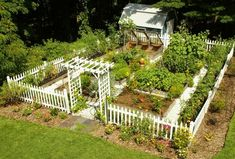 Vegetable garden with a picket fence