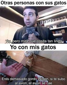 Read Tipico from the story Memes 2 by amandagnge with reads. Funny Spanish Memes, Funny Jokes, Hilarious, Funny Images, Funny Pictures, Best Memes, Youtubers, I Laughed, Haha