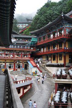 Guinsa Temple, South Korea South Korea Fashion, South Korea Seoul, South Korea Travel, North Korea, Asia Travel, Places Around The World, Around The Worlds, South Korean Won, South Korea Photography