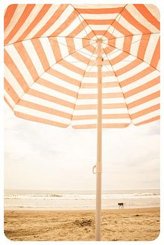 Umbrella, wonderfully striped