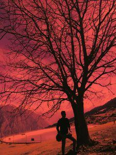 The woods are lovely, dark and deep. But i have promises to keep, and miles to go before i sleep...  #nature #beauty #life #travel #traveldiaries #shotoncanon #canon #6d #markii #travelholic #red #photography #photoshoot #photoediting #team #work #credit #flashmestudios #studiosflashme @kamrabharat @deepu.rai21 @studiosflashme #mountains #10000ft #abovetheclouds #erkamran #featureme