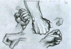 Resultado de imagem para simone bianchi anatomy