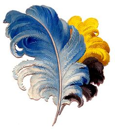 Victorian Graphics - Colorful Feathers - Plumes - The Graphics Fairy