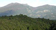 Parque del Montnegre y el Corredor  Localización: Norte de la costa de Barcelona, en la sierra litoral catalana.   Acceso: Desde Arenys de Mar.