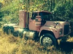 Mack Truck in the weeds.
