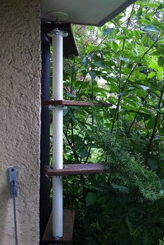 Katzentreppe Cat Climbing Tree, Indoor Climbing, Outdoor Cat Tree, Cat Walkway, Cat Climber, Cat Steps, Tree Plan, Cat Hacks, Cat Perch