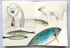 felicita sala illustration: sketchbook