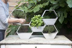 Garden Corner Hive: www.dmdepot.be