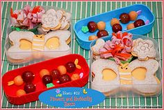 Flowers and Butterflies bento