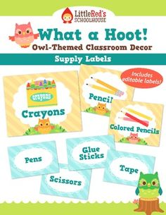 What a Hoot! Classroom Supply Labels - Customizable - Owl Theme $