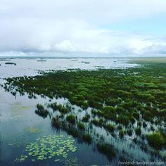🇫🇮 Na, wer weiß, wo das hier ist? 🇫🇮 Die Bucht liegt südlich von Oulu und ist bekannt als das wichtigste Feuchtgebiet Finnlands 😉 Naaaaa...???? 💙💙💙 #finnland #finland #finnlandrundreisen #suomi #liminka #ornithology #vögel #vogelbeobachtung #ornithologie #skandinavien #scandinavia #natur #nature #nordeuropa #northerneurope #thenorth #tiere #wildtiere #wildnis #wilderness #oulu #visitoulu #tierwelt #urlaub #urlaub2018 Mountains, Instagram, Nature, Travel, Outdoor, Europe, Birdwatching, Wilderness, Finland