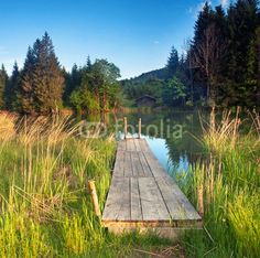 Sommer am Bergsee
