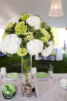Green and white hydrangea.