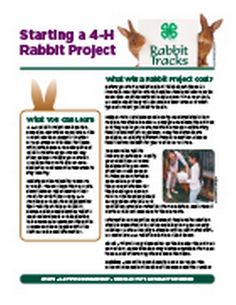 Michigan State University Extension applies research from MSU to help Michigan residents solve everyday problems in agriculture, community development, nutrition, family finances, youth development and more. Rabbit Tracks, Rabbit Pellets, Meat Rabbits, Rabbit Breeds, Rabbit Hutches, Veterinary Care, Hard Work And Dedication, Animal Projects, Maybe One Day
