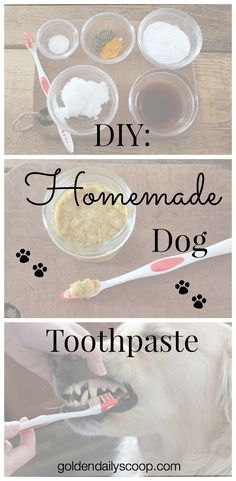 Homemade Dog Food DIY: Homemade Dog Toothpaste - DIY tutorial on how to make a natural homemade toothpaste for your dog. Homemade Dog Toothpaste, Toothpaste Recipe, Homemade Dog Food, Toothpaste For Dogs, Homemade Recipe, Dog Treat Recipes, Healthy Dog Treats, Dog Food Recipes, Doggie Treats
