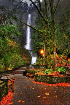 Autumn at Multnomah Falls in the Columbia River Gorge near P. - WaterfallsAutumn at Multnomah Falls in the Columbia River Gorge near Portland, Oregon Beautiful Waterfalls, Beautiful Landscapes, Dream Vacations, Vacation Spots, Vacation Places, Honeymoon Destinations, Places To Travel, Places To See, Places Around The World