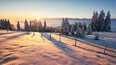 """Snow Adventure - """"Snow Adventure"""" - Auerberg/Bavaria  With fresh snow and icy -10°C it was a dream to look from the 1000m high Auerberg towards the Alps. The warm light of the rising sun dipped for a short time the white snowy landscape in shades of red and left a memorable atmosphere.  Prints and licensing available.  <a href=""""https://www.facebook.com/StefanHefelePhotography"""">Facebook Fan Site</a>  <a href=""""http://www.stefan-hefele.de/en/news.html"""">www.stefan-hefele.de</a>"""