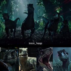 The Raptor Squad- from @jurassic_fanpage ig