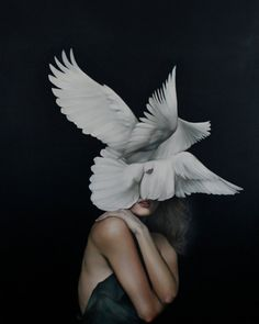 Angels or Goddesses? Avian Paintings by Amy Judd Artist Amy Judd explores the relationship between birds & women in traditional mythologies in her recent series of oil paintings. Judd merges the elegance & lightness of birds w/ the female form. Lapin Art, Amy, Art Du Monde, Illustration Art, Illustrations, Illustration Pictures, Realistic Paintings, Oil Paintings, Hyperrealism Paintings