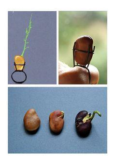 Camille Montcomble - a ring with a seed pod @Creadora de Picnics