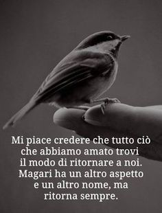 Papà frasi Poetry Quotes, Words Quotes, Some Quotes, Best Quotes, Italian Quotes, Magic Words, Interesting Quotes, Phobias, Zodiac Quotes