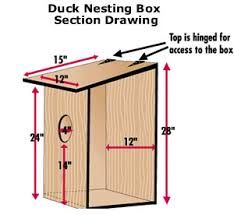 Building bird houses is fun, especially when you build some with your family. Learn how to build bluebird bird houses, a great afternoon project. Wood Duck House, Duck House Plans, Building Bird Houses, Bird Houses Diy, Duck Bird, Bird House Kits, Nesting Boxes, Kit Homes, The Ranch