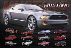 Mustang Evolution - 24 x 36 inch Poster * New *