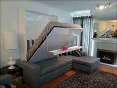 Murphy Bed Over sofa Combo