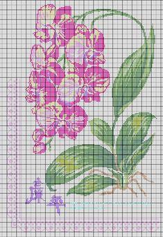 J'avais besoin de me réaliser une grille d'Orchidée, je l'ai décliné en 4 couleurs différentes, si vous voulez que je transfère les grilles en PDF si elles vous intéressent, dites le moi.
