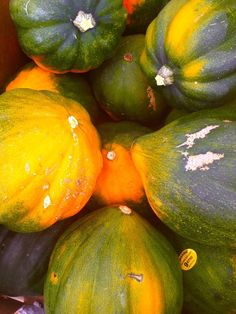Fall is arriving! Say hello to our first acorn squashes! I feel a cool raw pasta recipe coming up...