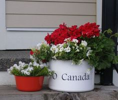 o canada canada day porch planter, container gardening, flowers, gardening Canada Day Party, White Planters, Garden Planters, Porch Planter, Canada Day Crafts, Blueberry Bushes, Sun Loving Plants, Happy Canada Day, O Canada