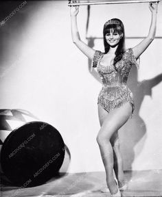 photo Claudia Cardinale hanging on trapeze swing film Circus World 410-01