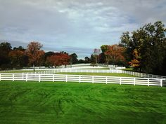 Horse Fencing in Greenwich, CT Horse Fencing, Fences, Deer Fence, Fence Styles, Home Estimate, Acre, Equestrian, Golf Courses, Pergola