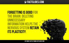 Forgetting is good for the brain: deleting unnecessary information helps the nervous system retain its plasticity.