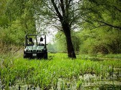Apa barangol ( Dél-Hanság ) Golf Carts, Country Roads