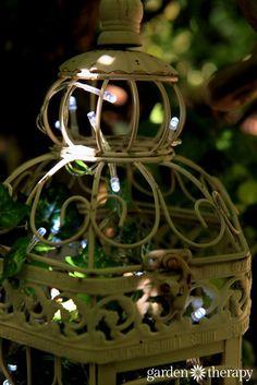 birdcage outdoor fairy lights
