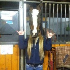 Sometimes a horse needs to rock out. | 24 Animal Pictures You Have To Look At Twice