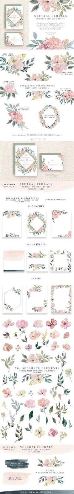 Neutral Watercolor Flower Graphics by Essem Creatives on @creativemarket