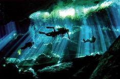 Cancun and Riviera Maya tours with visits to cenotes to swim, dive and snorkel. Learn more about the cenotes in Mexico's Yucatan Peninsula. Riviera Maya Mexique, México Riviera Maya, Underwater Caves, Best Scuba Diving, Cave Diving, Sea Diving, Snorkeling, Places To See, Photos
