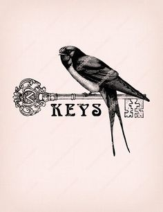 Keys sign Swallow Bird Key graphic Vintage Collage illustration Antique drawing Printable Transfer Image DIGITAL INSTANT DOWNLOAD HQ300dpi by ShabbyChicPrintable on Etsy