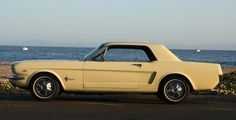 I once had a 65' Mustang coupe just like this one..... pale yellow with tan interior, it was a nice car, it had a front bench seat & you could adjust the side windows from inside the car..... both were unusual for this make & year, were original.