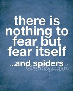 Nothing to Fear, Except Spiders