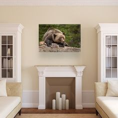 Add life to any room with a wildlife image! 50% OFF Canvas Print Sale With Free Shipping! Order here ->http://ift.tt/2xOE8hi #animals_shots_ #adorable_animals #canonbringit #canonfanphoto #girlshunttoo #pocket_allnature #master_shots #special_shots #ig_exquisite #big_shotz #superhubs #theworldshotz #ig_shotz #thebest_capture #splendid_shotz #dream_image #igglobalclub #igersmood #colors_of_day #hubs_united #globalcapture #shotzdelight #photowall #chasse #benelli #browning #nature_specialist…