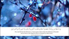 Salmiah Collection: Islamic Wallpaper 9