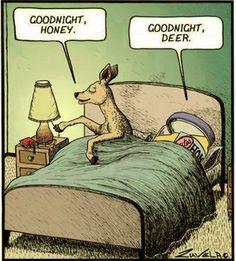 Good Night Honey, Good Night Deer