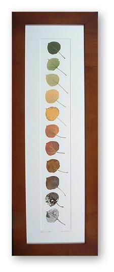 cool idea with the colors... or just framing pressed leaves in general; seasonal art piece