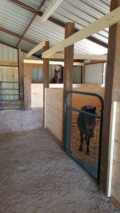 Barn Stalls, Horse Stalls, Goat Barn, Farm Barn, Small Horse Barns, Barn Layout, Horse Paddock, Horse Barn Designs, Backyard Barn